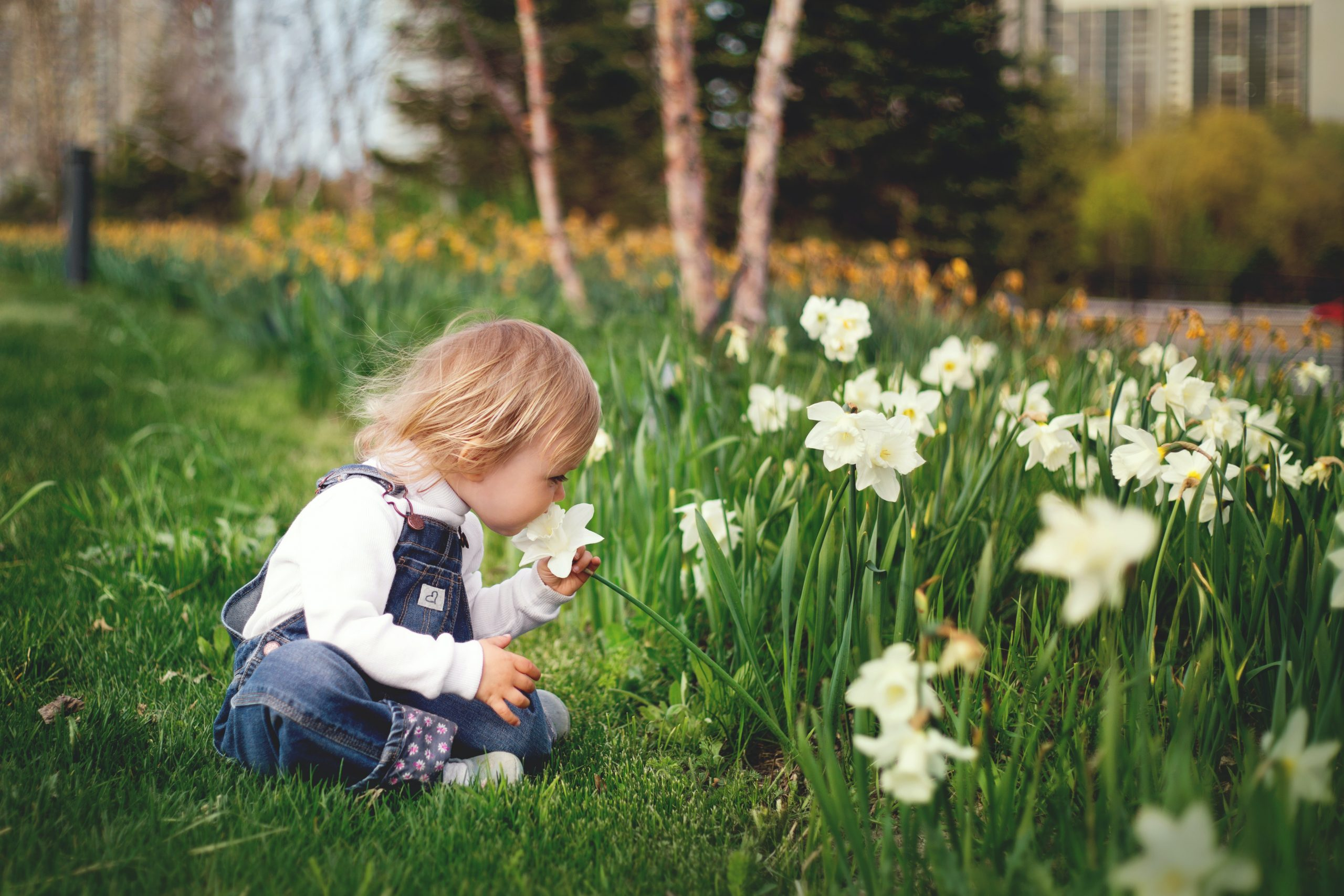 How to transform your school or nursery garden for 2021
