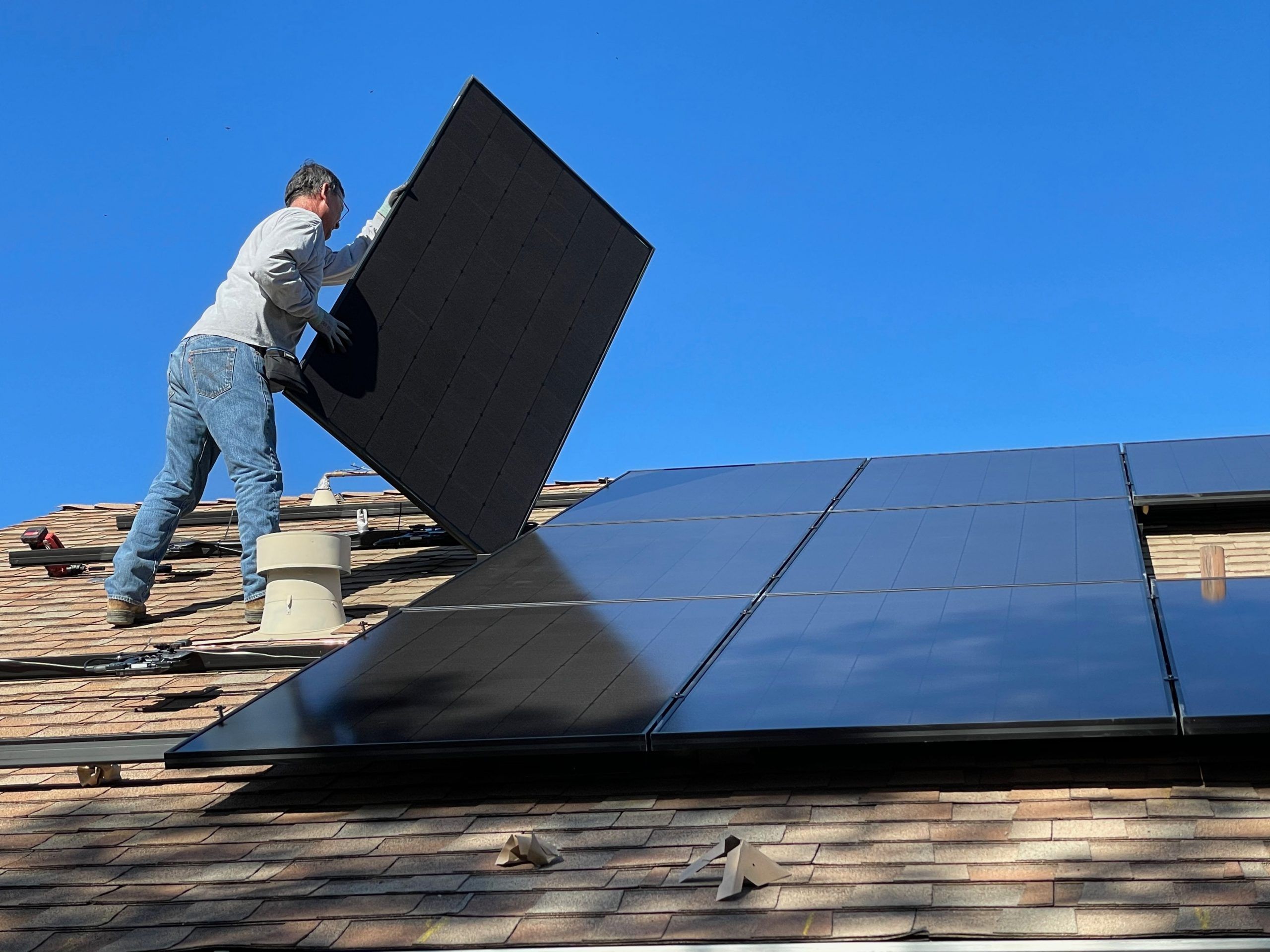 Bird Proofing Your Solar Panels